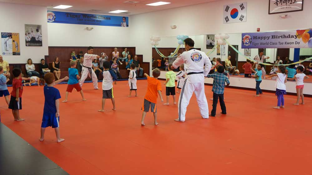 Tiger World Class Taekwondo & Family Martial Arts Birthday punching