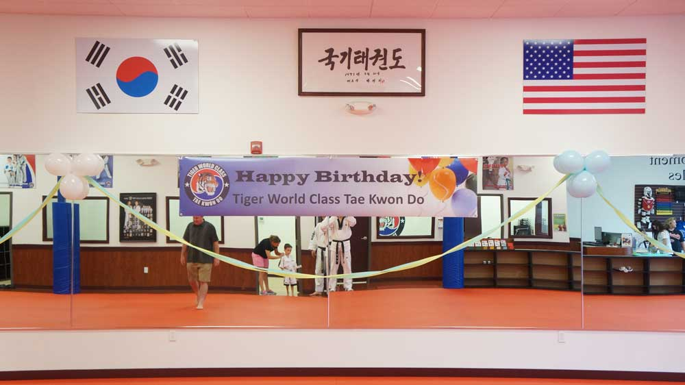 Tiger World Class Taekwondo & Family Martial Arts Birthday Party Decorations